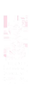 Deirdre Schokking | training en coaching Logo